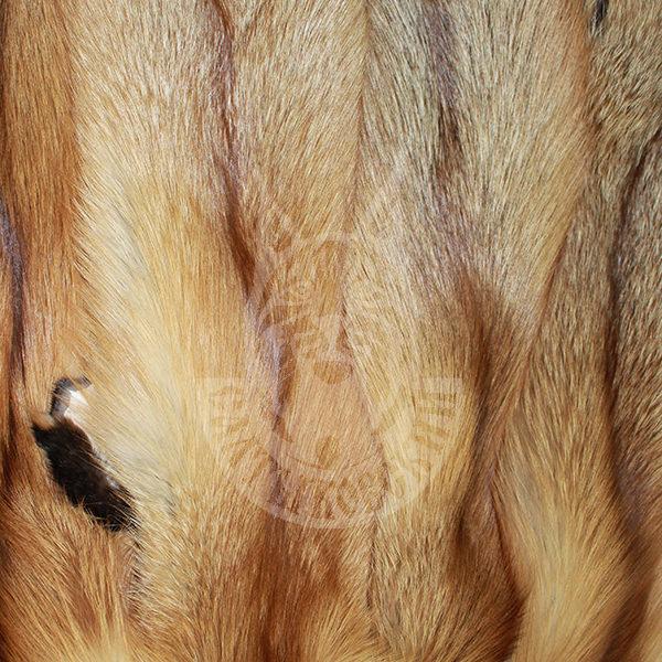 "Fox skins (raw) ""Red"""