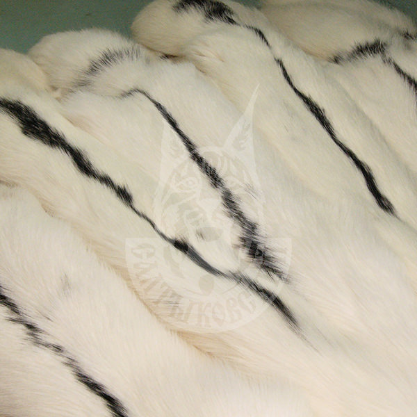 """Fox skins colored S/P """"Snowy"""""""
