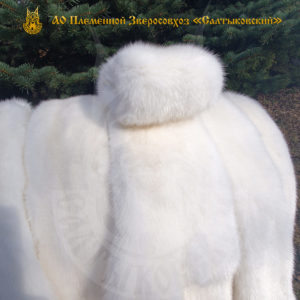 White mink fur — now in our shop!