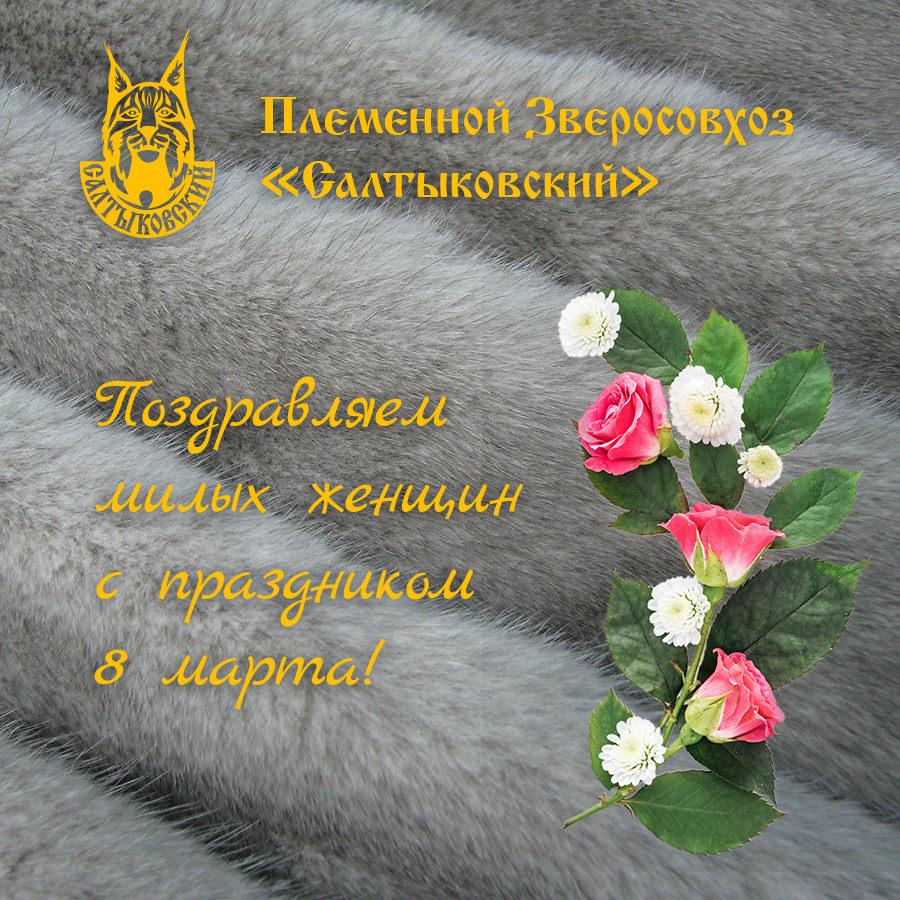 "Fur farm ""Saltykovsky"" congratulates on March 8!"
