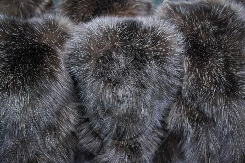 """Sable """"Saltykovsky"""" at Saga Furs auction"""