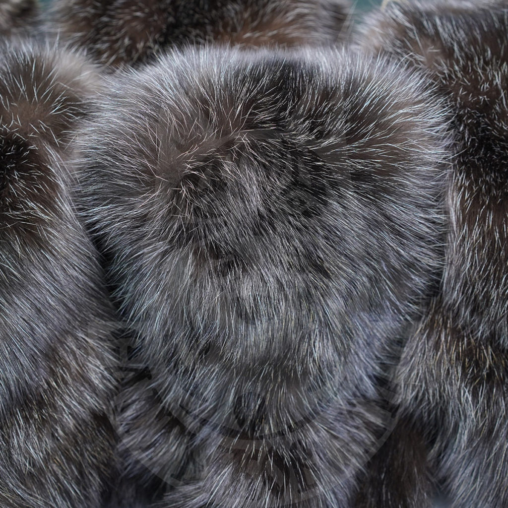 Saltykovsky Fur Farm will present its products at the international auction Saga Furs