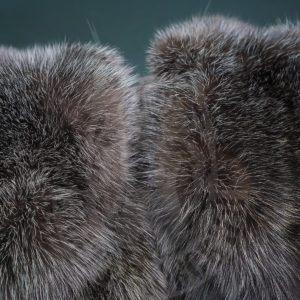 "International auction Saga Furs opened bidding: have time to buy the elite furs from the fur farm ""Saltykovsky""!"